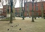salinCujas_-_Palais_de_Justice_de_Toulouse.jpg